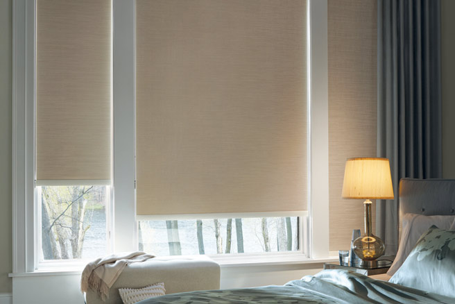 Modern Roller And Solar Shades